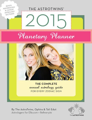 Past Year: 2015 Planetary Planner (eBook/PDF)