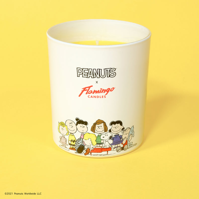 Peanuts x Flamingo Candles Root Beer Peanuts Gang Jar Candle - SOLD OUT - PREORDER