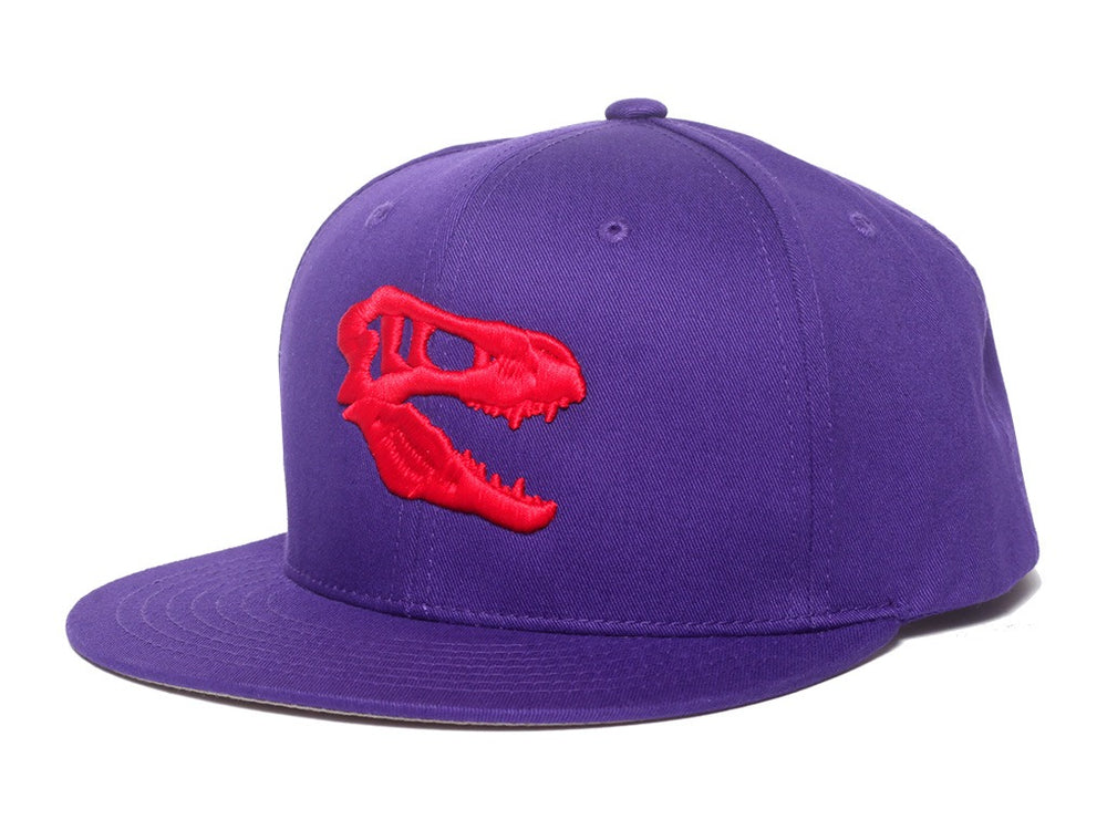 Savage Snapback (Purple)