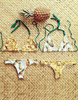 Two Sides Reversible Pineapple Bikini - 5 styles - Awesome World - Online Store  - 1