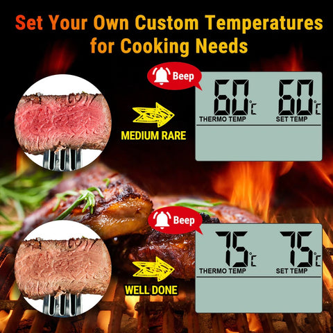 ThermoPro TP16 Digital BBQ Meat Thermometer