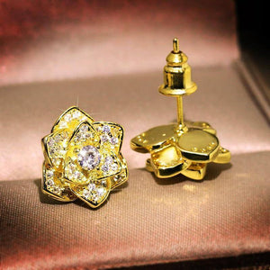 14K Gold White Diamond Earring for Women Fine Natural 925 Jewelry Gemstone Bizuteria Bijoux Femme Orecchini Stud Earrings | akolzol