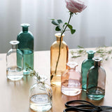 Vase Living Room Dried Flowers Nordic Ins Style Glass Transparent Dill Home Decoration Accessories Flower Vases For Homes | akolzol