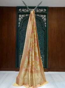 Light Mutli Color Chiffon Saree