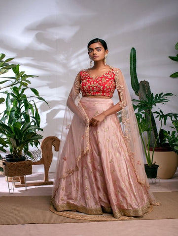 Blush Pink And Red Raw Silk Zardosi Lehenga Set (Set of 3) By Anisha Shetty now available at Trendroots
