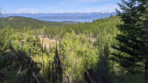 Legacy bike park view with camping and biking in Flathead Montana Lakeside