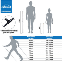 Lade das Bild in den Galerie-Viewer, Carbon Nordic Walking Stock