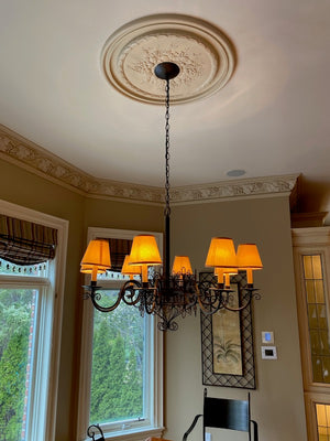 8 Light/Shade Metal Light Fixture
