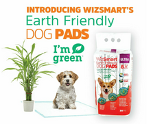 Load image into Gallery viewer, WizSmart - All Day Dry Earth Friendly 30pk