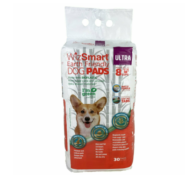 WizSmart - All Day Dry Earth Friendly 30pk