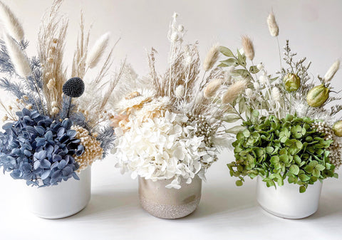 Blog Dried Flowers Gifts. Colours, Style, Size, Occasion