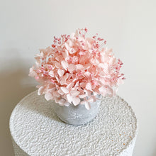Load image into Gallery viewer, Pale Pink Hydrangea Petite Mini