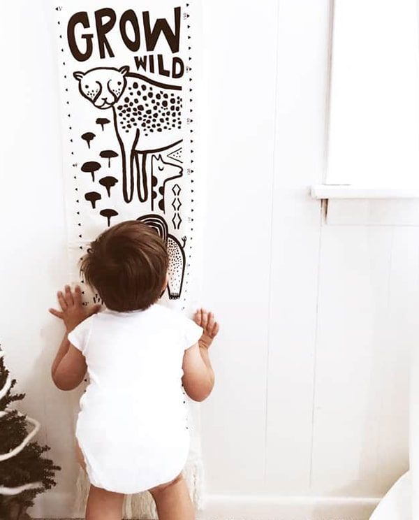 Wee Gallery - Canvas Growth Charts - Safari