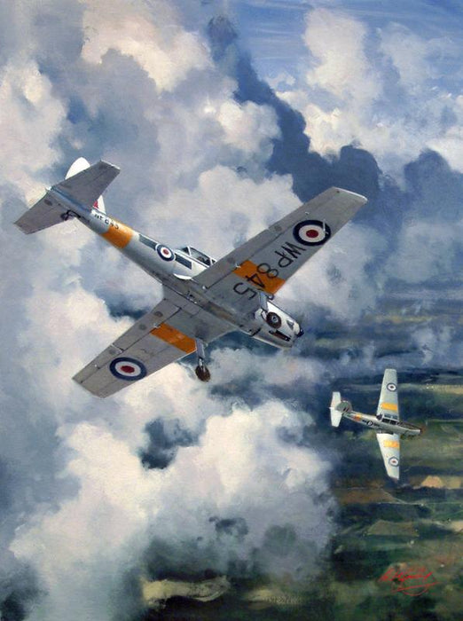 Skylarking - De Havilland Chipmunk