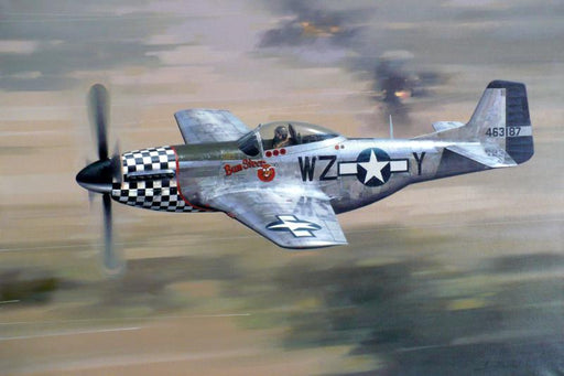 Bum Steer - North American P-51D Mustang