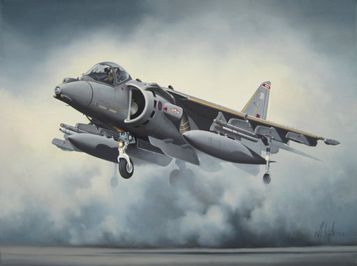 Harrier Rising - BAe Harrier GR9