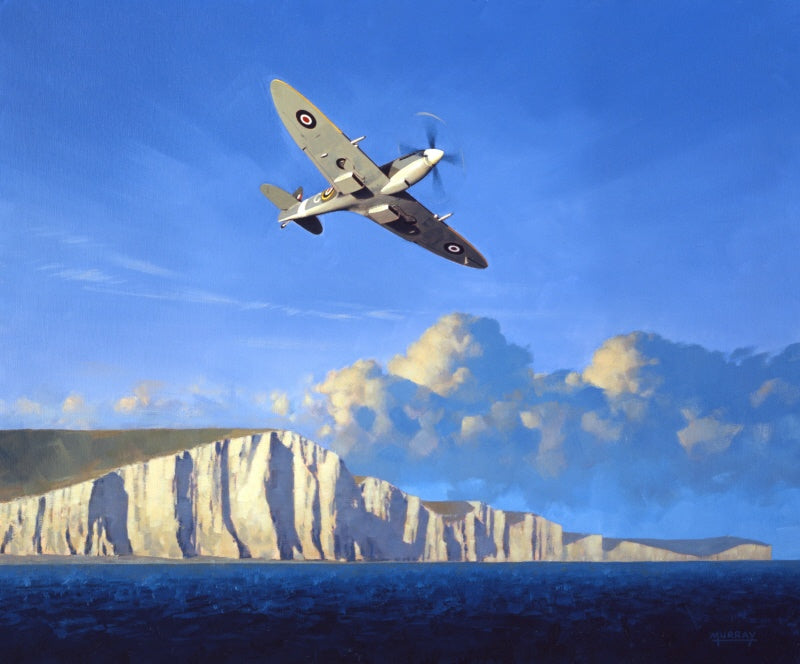 Guardian Of Our Shores - Supermarine Spitfire Mk.IX