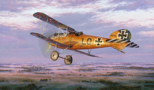 On Morning's Golden Wings - Albatros D.V