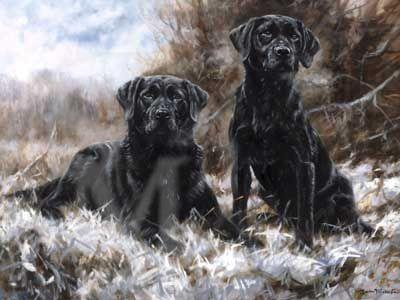 John Trickett - Breath of Winter - Black Labrador