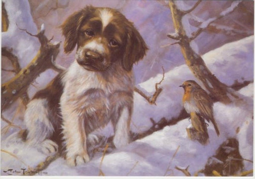 John Trickett - First Encounter - Springer Spaniel