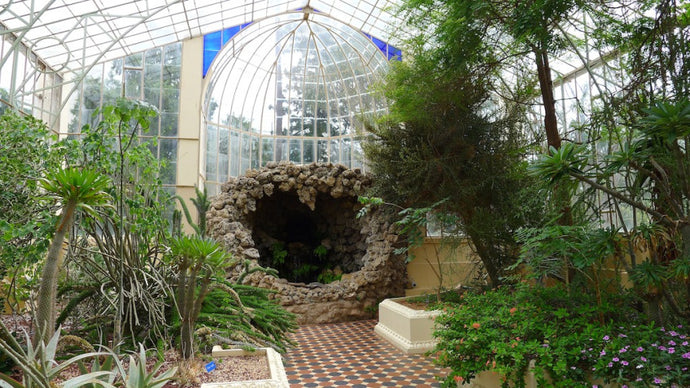 Adelaide Botanic Garden: A Spacious Oasis In the Heart Of Down South
