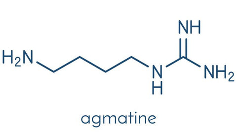 Agmatine-Structure