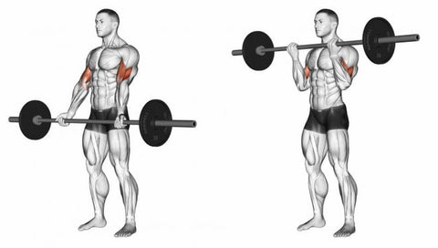 Barbell-Curl-For-Biceps