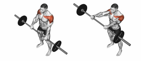 Barbell-Front-Raises