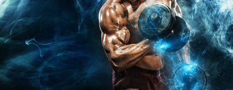 Epicatechin-for-bodybuilding