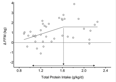 Total Protein Intake Per Day