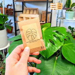 Monstera Deliciosa Seed packet and plant