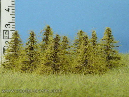 Model Scene MO034 Larch Trees Autumn Foliage 5mm - 35mm Tall (8 Trees)