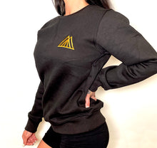 Load image into Gallery viewer, TMPL3 unisex logo pullover