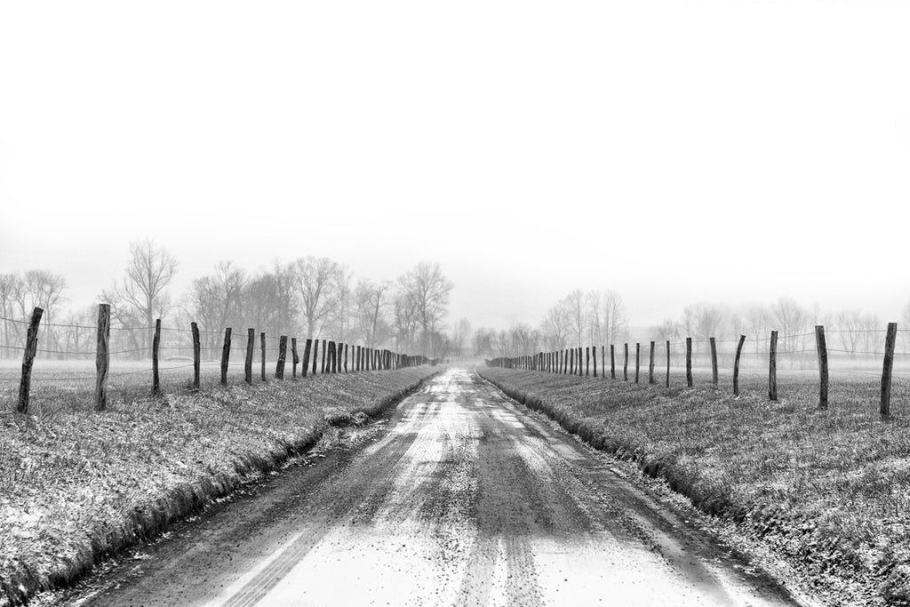 Black and White Dirt Road Artwork for Sale