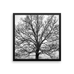 Exposed Framed Black and White Poster