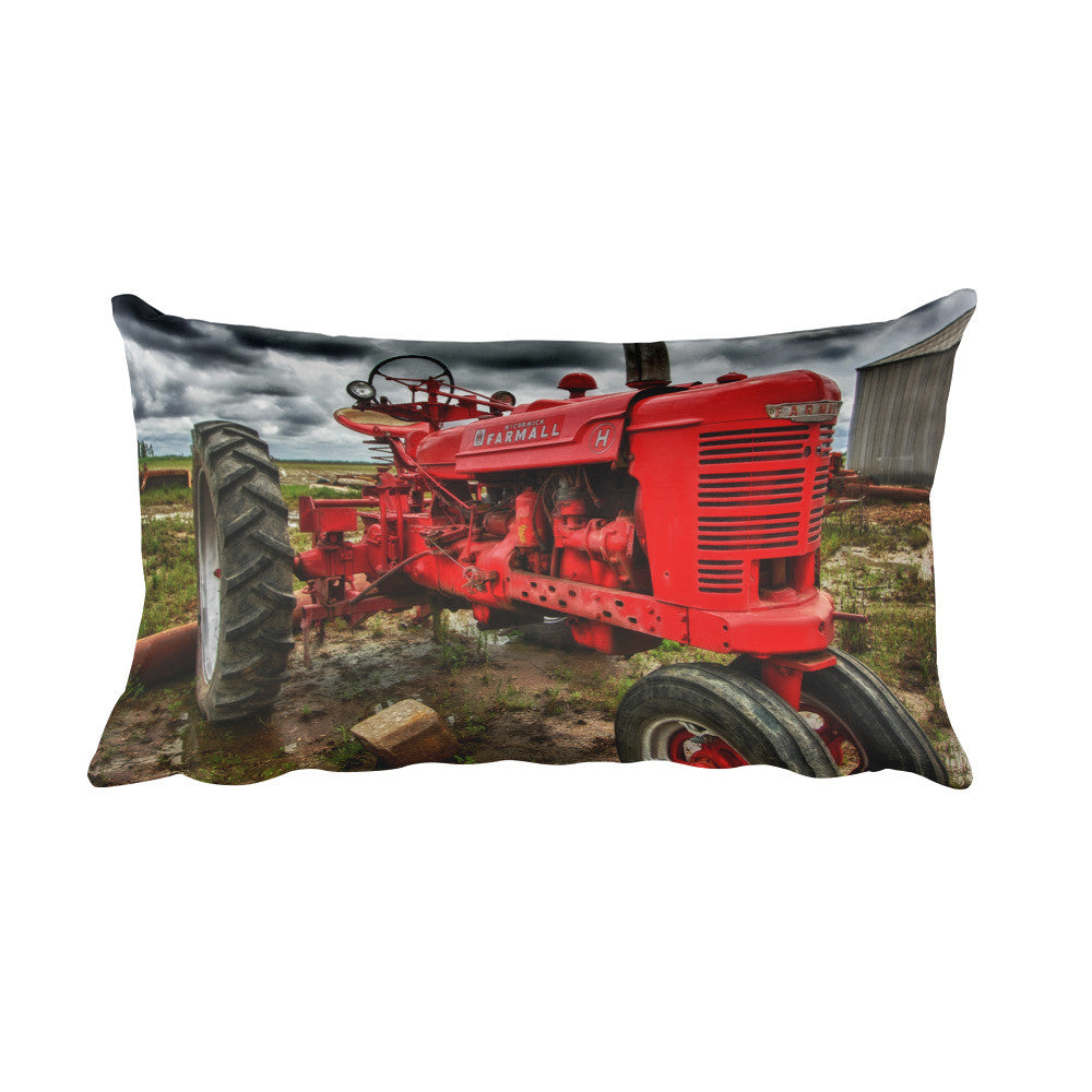 Strong and Steady Farmhouse Decorative Pillow