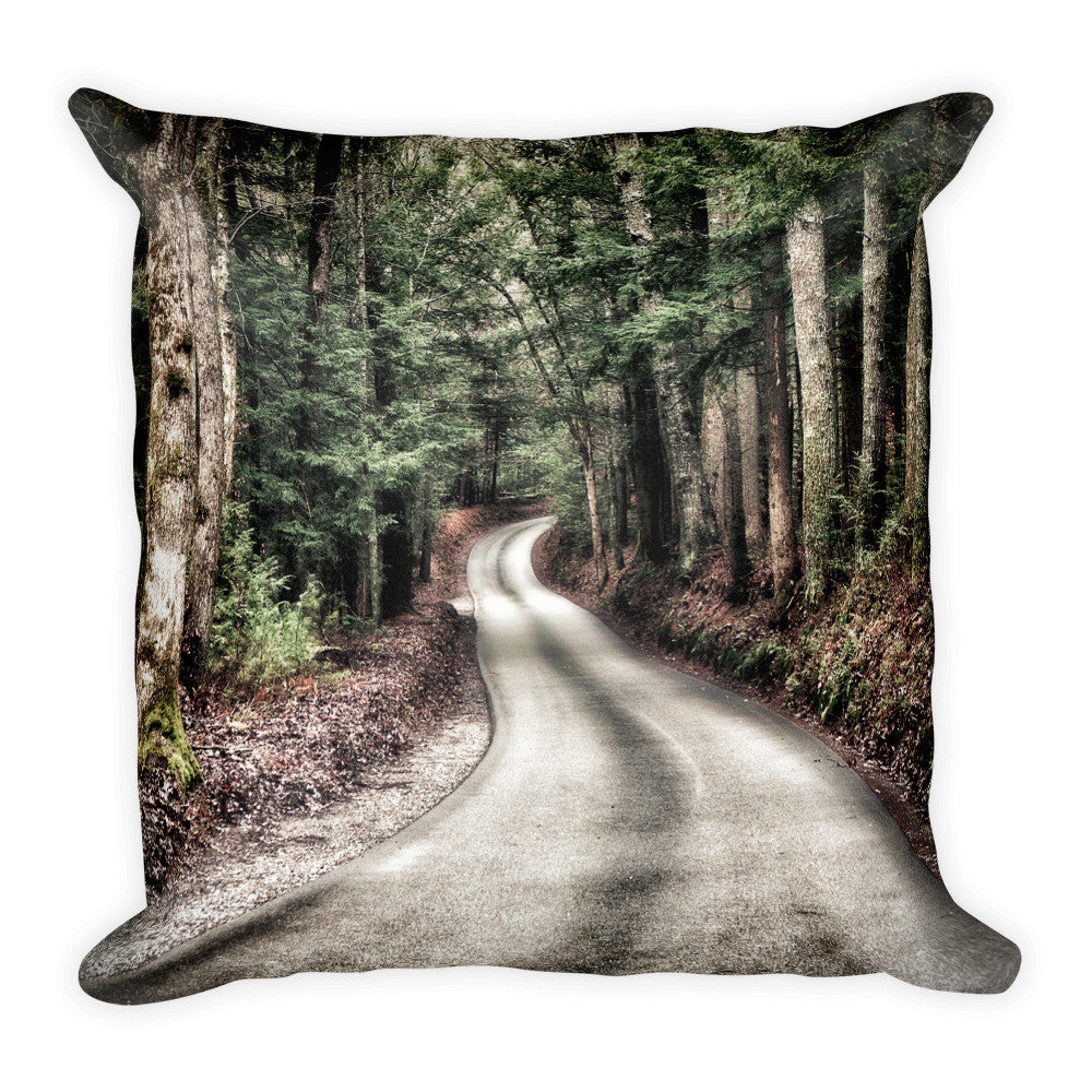 A Better Highway Square Pillow