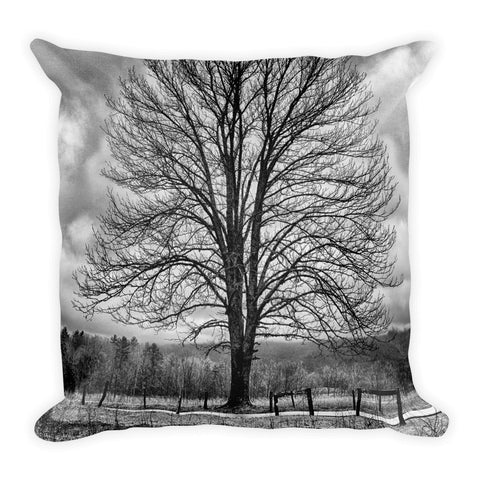 Standing Alone Black and White Square Tree Throw Pillow
