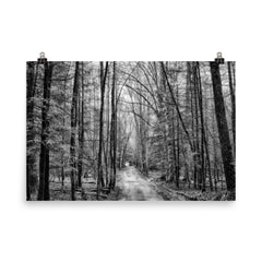 Mystical Forest Unframed Black and White Poster