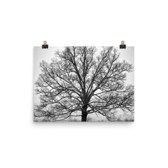 Exposed Unframed Black and White Poster
