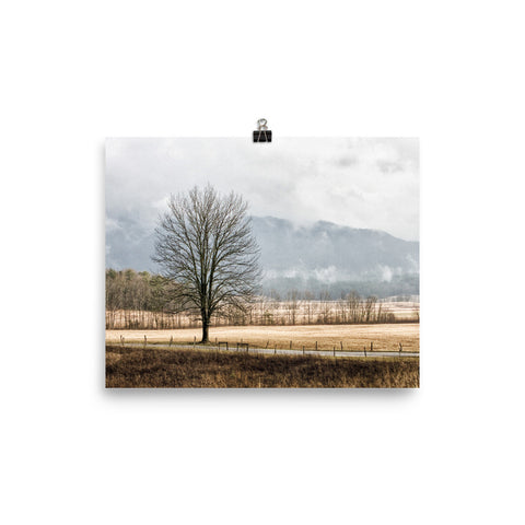 Solitude Unframed Poster