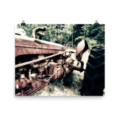 Rusted Mule Unframed Poster