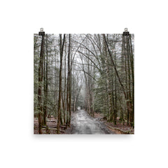 Mystical Forest Unframed Poster