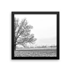 Frozen Framed Black and White Poster