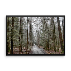 Mystical Forest Framed Poster