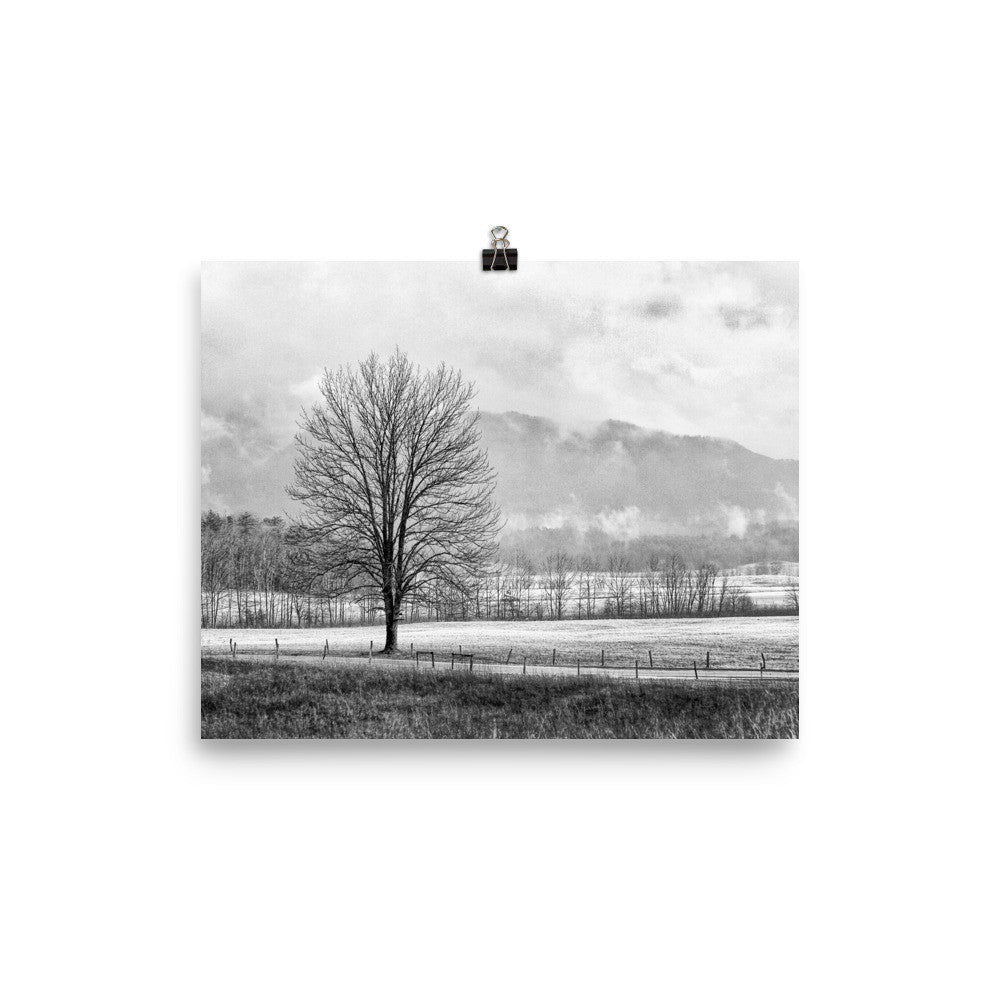 Solitude Unframed Black and White Poster