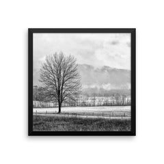 Solitude Framed Black and White Poster