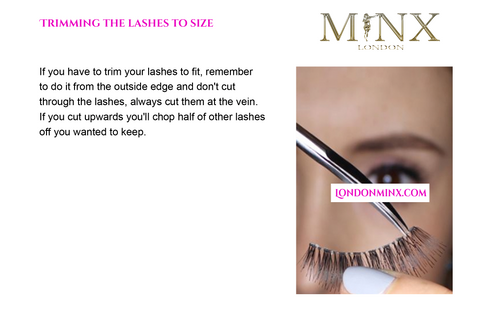 """page of """"how to appy lashes tutorial / instructions"""""""