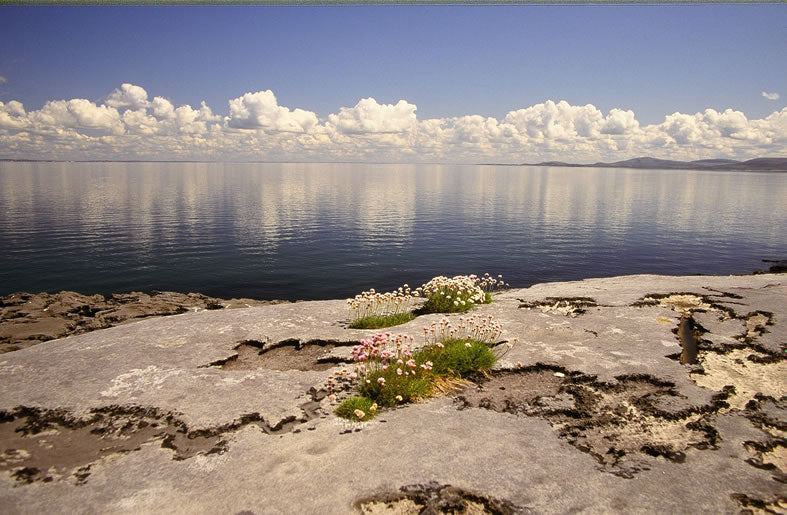The Burren at Galway Bay.