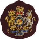 WO1 Gold On Para Maroon Badge